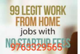 Earn handful of money sit at home , no boss , no tension