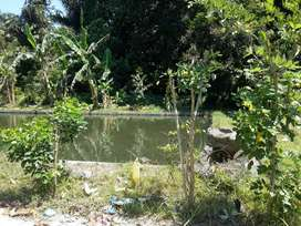 Jual Tanah/Kebun murah (ada kolam ikan)
