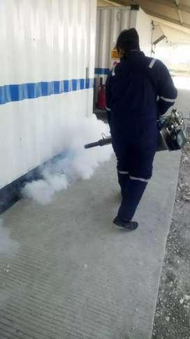 Pest control Termite control Basmi Hama Rayap Tikus kecoa fogging