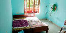Paying Guest For Ladies @ Kalamassery