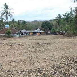Tanah Area Kulonprogo Luasan 142m Sangat Ideal, Legalitas SHM Pecah