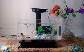 Aquarium Full PVC-Kaca Akrylic | Lengkap LED, Mesin, Aksesoris