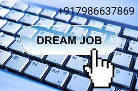 Need sale's executive for MNC campany with handsom salary