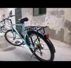 Mountain Bicycle Condition 9/10