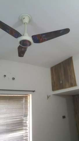 1 bed non furnish is available in my 10 marla single storey house