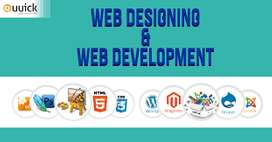 Website Developer/Digital marketing Executive Require For E Commerce