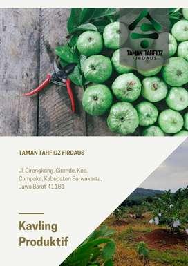 Investasi Kavling Produktif Agrobisnis Purwakarta, Kawasan Pesantren