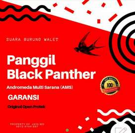Panggil Black Panther Suara panggil walet AMS ori Open Protek Garansi