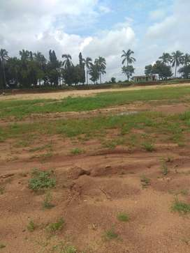 plot for sale in tukkuguda near shamshabad