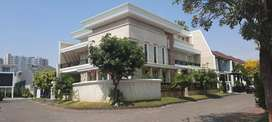 Rumah Kertajaya Indah Regency, Bagus, Mewah, Minimalis, Row Jalan Ok