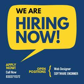 web designing and software enginner