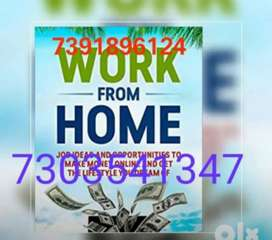 Earn unlimited income from home data typing work