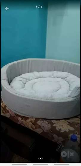 bed for dogs &cat