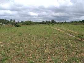 2.19 acres of agriculture land sale near Shoolagiri