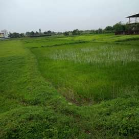 Open plot sale 22 guntha (22गुंठा) 6.5 lack per guntha