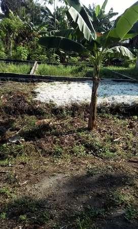 Dijual cepat tanah+pondasi ukuran lebar 10,5 .panjang 18 meter