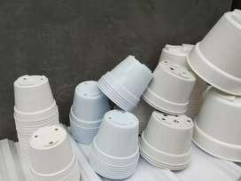 Pot plastik putih minimalis kecil