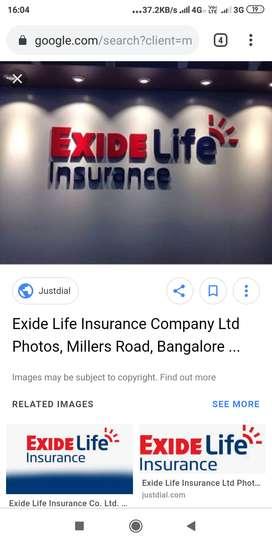 FINANCEIAL ADVISOR & TEAM LEADER OF EXIDE LIFE INSURANCE