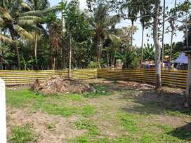 5 cents Residential Plot for Sale at Pazhaveedu Alleppey