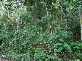 15 cent land for sale at mangalathukonam,  eduva