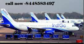 Hiring Candidates For Cabin Crew Members freshers 10th/12th pass apply