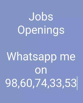 Do part time job and earn daily basics through online