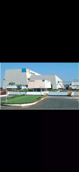 Caparo groups of company jobs