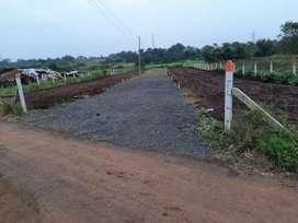 Open bangalo plot in Moi Gav 1guntha to 11gunthe plotting