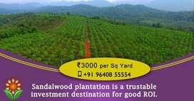 Sandalwood Farm lands for sale