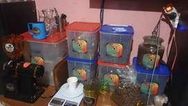 Kopi ( coffe ) greenbean dan roastbean