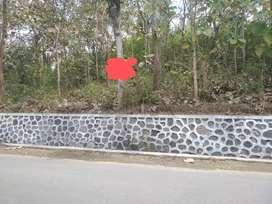 Jual tanah pinggir jl dekat makam sunan Bayat klaten