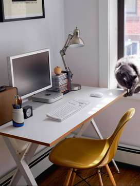 Back office sales profile