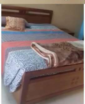 Studio falt full furnished4rent in bahria height1bahria town rwp
