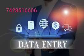 Need a fresher's for data typing home based job