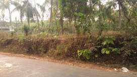 750m from Naduvannur town,mainroad side,near LP-UP-HS-HSS schools,