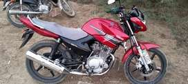 Yamaha YBR 125 2016 model only RS 95000