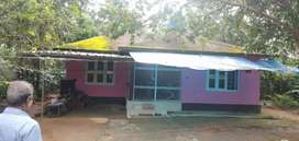A beautiful house with 3 bed room and 43 cent land for sale urgent sal