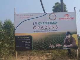 అతి తక్కువ ప్రైస్ లో form land  సైట్స్ k.kotapadu  లో గజం 3500/--
