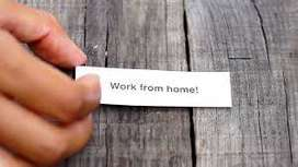 Offline & Online Data Entry job