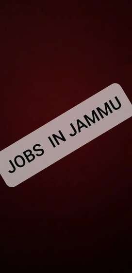 Bcom freshers required for office work