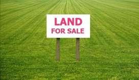 Land for sale in Dumdumia, Dhing, Nagaon
