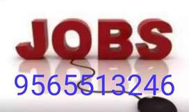 .Fresher/ experienced back office,Customer care Executive r needed