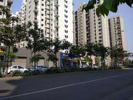 Two bhk flat available for female bachelors on sharing basis