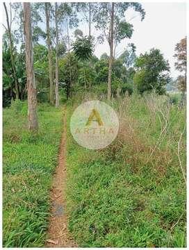 Jual Tanah Kebun di Cisondari Ciwidey Pasirjambu Bandung