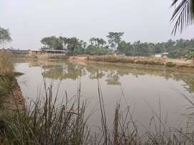 Fishery with Piggery Farm at Digaru
