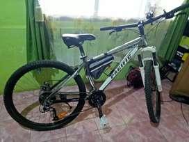 Sepeda Tranzline 300