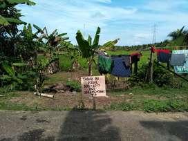 Tanah dijual murah