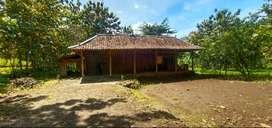 (BM) Tanah+Rumah DSN Sambeng I sambirejo Ngawen Gunungkidul