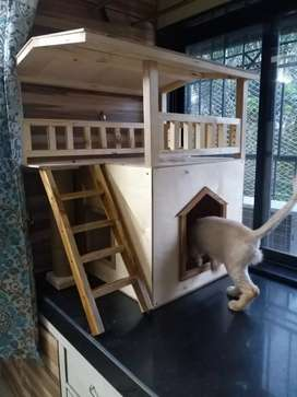 Pet House For Cats and Dogs