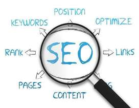 SEO Executive / SMO Executive - Digital Marketing (OSR Infotech)
